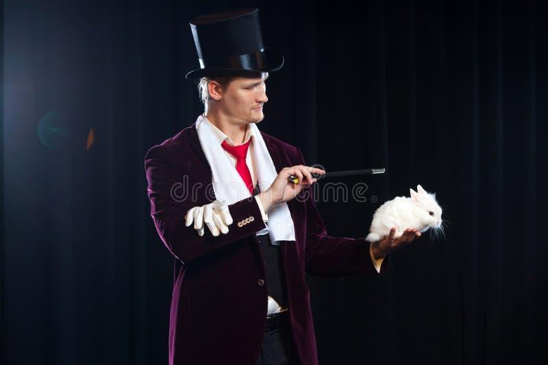 Magier mit Kaninchen, Jongleurmann, lustige Person, schwarze Magie, Illusion auf einem schwarzen Hintergrund lizenzfreies stockbild