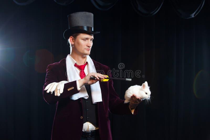 Magik z królikiem, Juggler mężczyzna, Śmieszna osoba, Czarna magia, złudzenie na czarnym tle fotografia stock