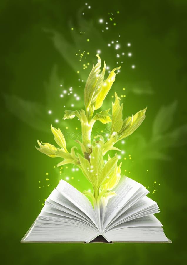 Magisch boek van grond royalty-vrije illustratie