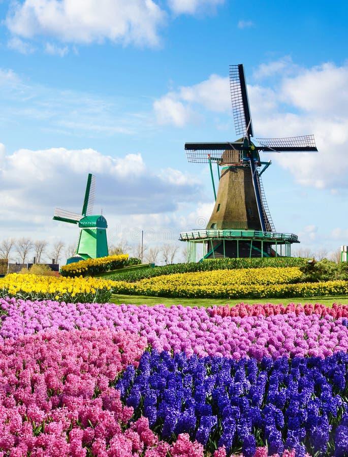 Magisch de lentelandschap met binnen bloemen en patronen luchtmolen stock afbeelding