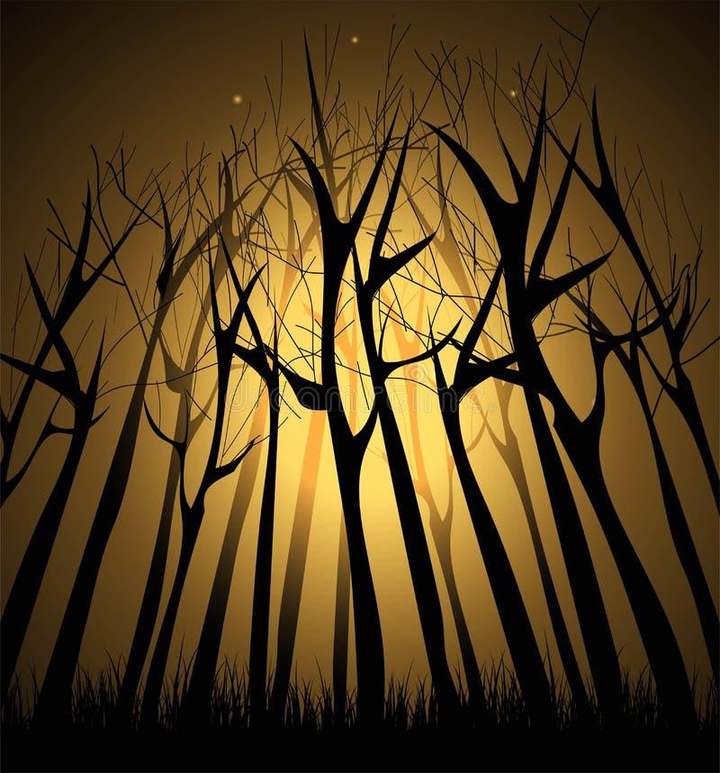magisch Donker bos royalty-vrije illustratie