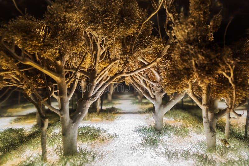 Magisch donker bos stock afbeelding