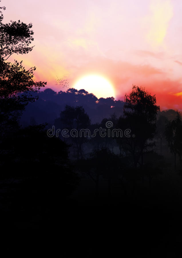 Magisch Forest Sunset vector illustratie