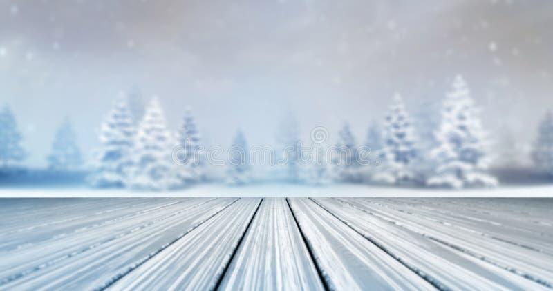 Magisch kalm de winterbos met houten dekvoorzijde bij daglicht royalty-vrije stock fotografie