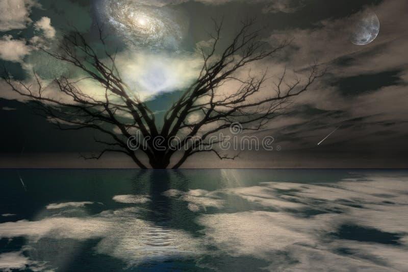 Magisch landschap vector illustratie