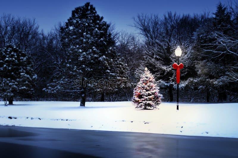 Magisch Lit-Boomgloed helder op Sneeuw Behandelde Kerstmisochtend royalty-vrije stock fotografie