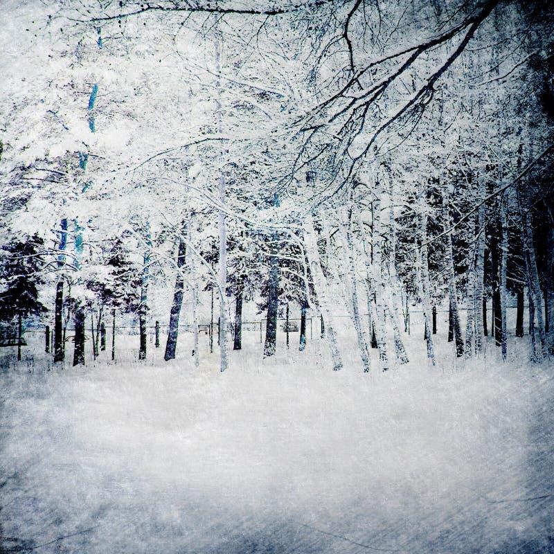 Magische de winterachtergrond met bos royalty-vrije illustratie