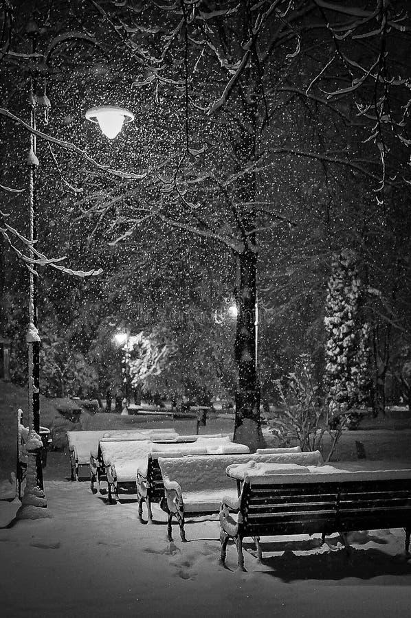 Magische de winternacht stock afbeeldingen