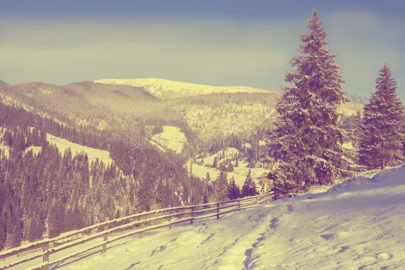 Magische Landschaft in den Winterbergen lizenzfreie stockfotografie