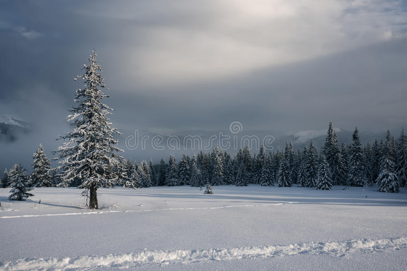 Magische Landschaft der Winterberge nach Schneesturm lizenzfreies stockbild