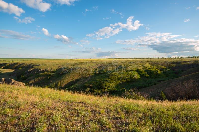 Magische Landschaft eines grünen Graslands lizenzfreie stockfotografie