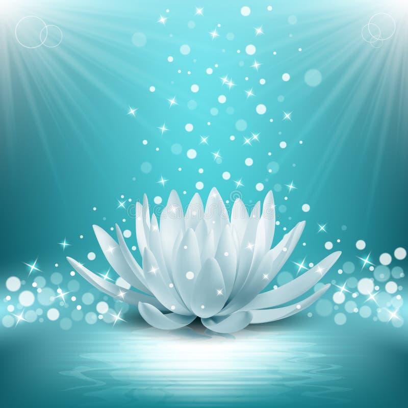 Magische lotusbloembloem royalty-vrije illustratie