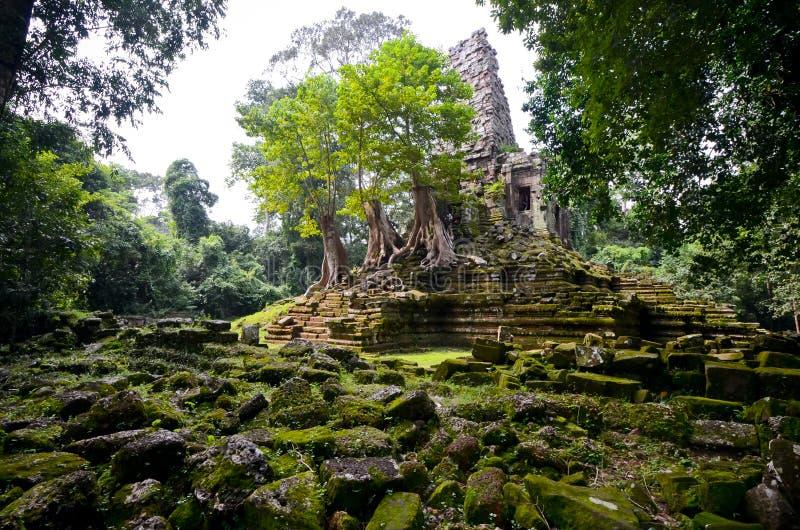 Magische Tempel in Kambodja stock afbeeldingen