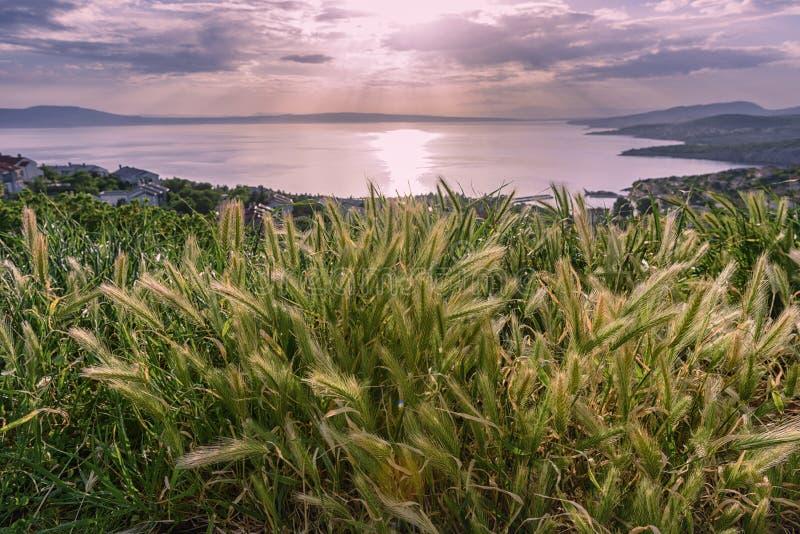 Magische zonsondergang op Adriatische kust in Kroatië stock foto's