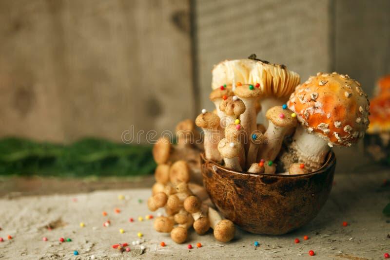 Magischer Märchenpartei-Tabellendekor, Pilz mit Süßigkeiten in der Schale auf hölzernem Hintergrund, vergiften giftiges Lebensmit lizenzfreie stockfotografie