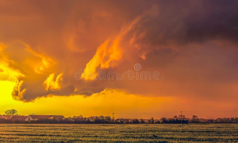 Magischer orange Sonnenuntergang über dem Feld lizenzfreie stockbilder