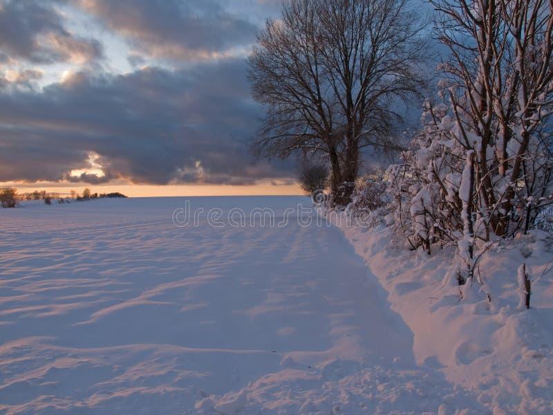 Magischer Wintersonnenuntergang auf einem Schneegebiet stockfotografie