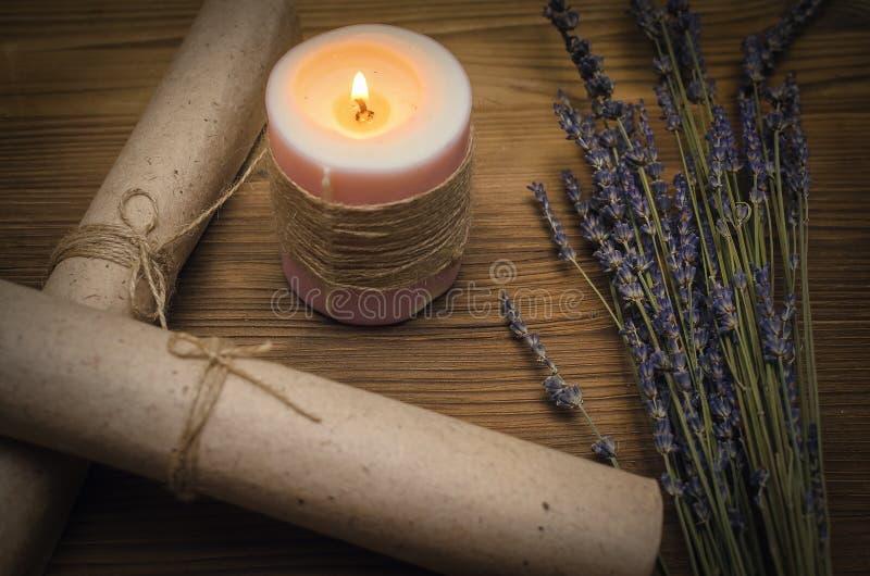 Magisk dryck Phytotherapy alternativ växt- medicin shaman druidism royaltyfri bild