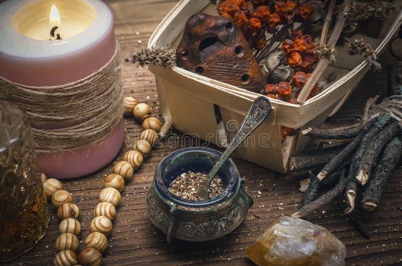 Magisk dryck Phytotherapy alternativ växt- medicin shaman druidism royaltyfria bilder