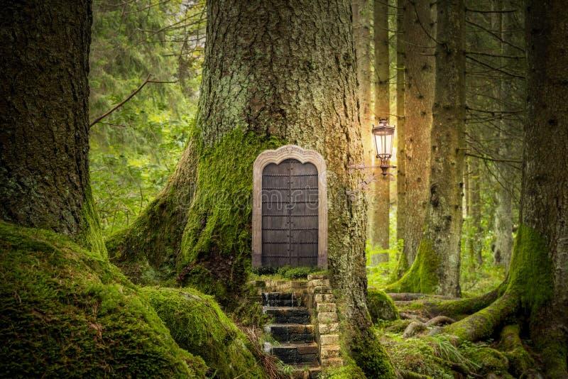 Magisk fantasivärld fotografering för bildbyråer