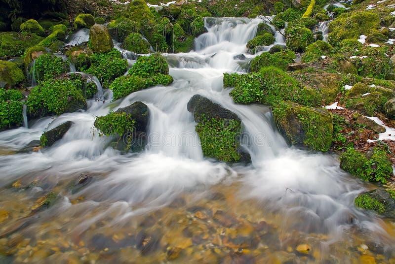 magisk flod arkivbilder