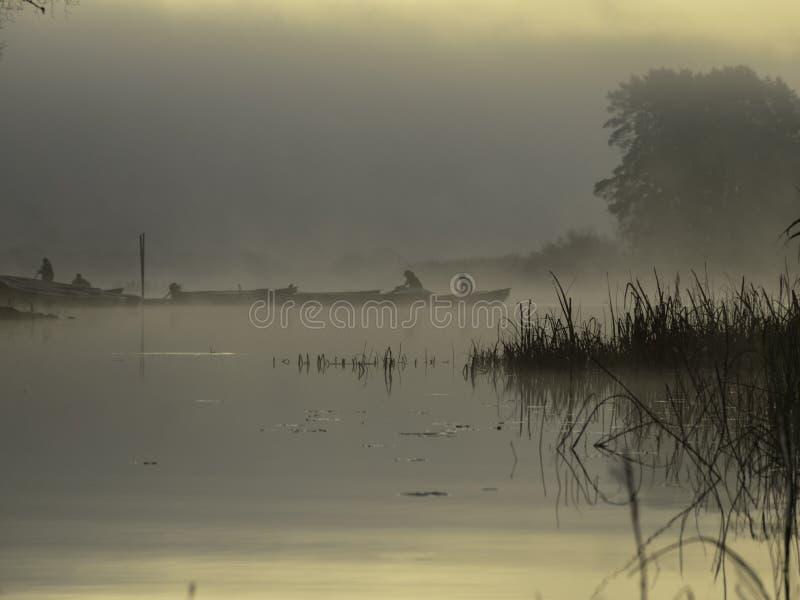 magisk morgon på floden arkivbild