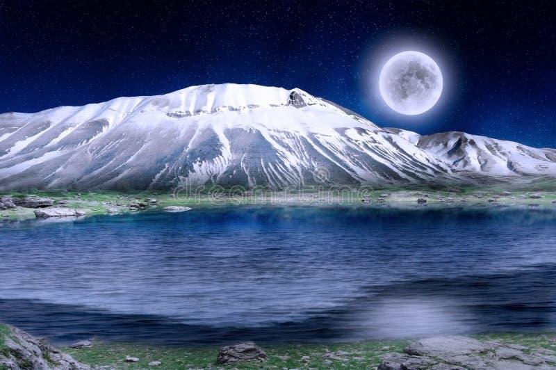 magisk nattvinter royaltyfri foto
