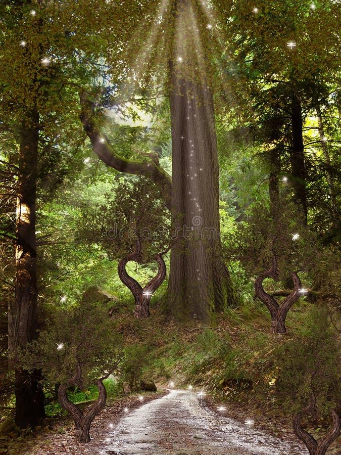 Magisk skog royaltyfri illustrationer