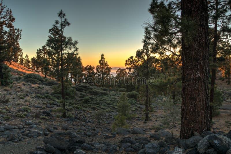 Magisk solnedgång ovanför molnen i de Tenerife bergen i kanariefågelöar arkivbilder