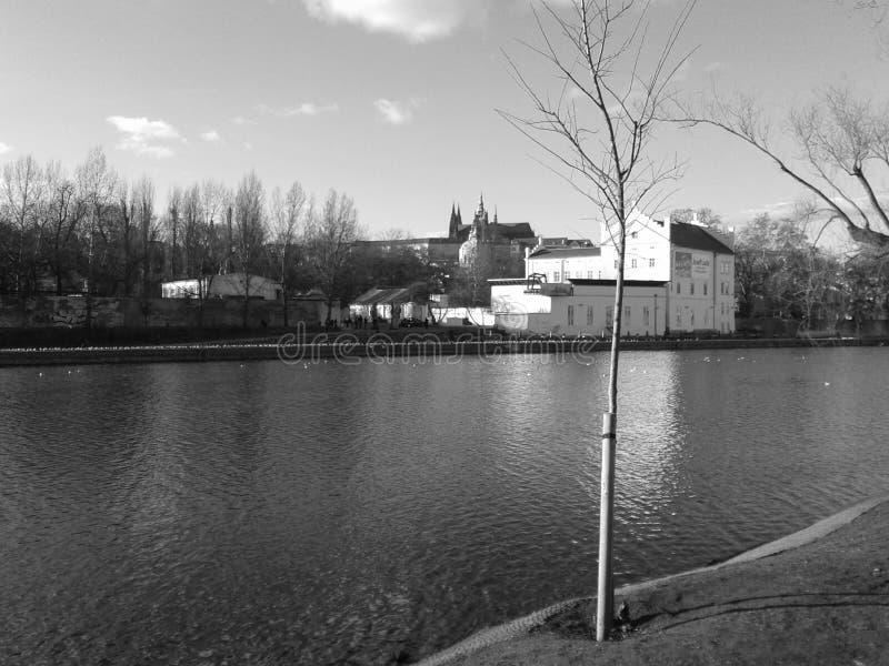Magisk vår Prague arkivbild