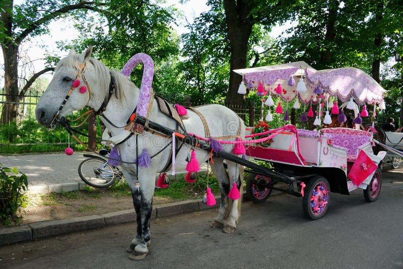 Magisk vagn för prinsessa i Suzdal arkivbilder