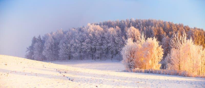 Magisk vintergryning fotografering för bildbyråer