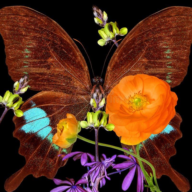 Magiska blommor och fjäril Inspiration- och fantasinaturvärld royaltyfri bild