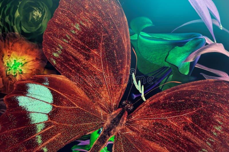 Magiska blommor och fjäril Inspiration- och fantasinaturvärld arkivfoto