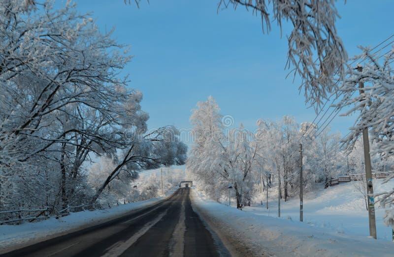 Magiska träd som täckas med snöfall för snöjulnatt Väg för fen Lapland i solig dag Romantiskt lopp som övervintrar royaltyfri fotografi