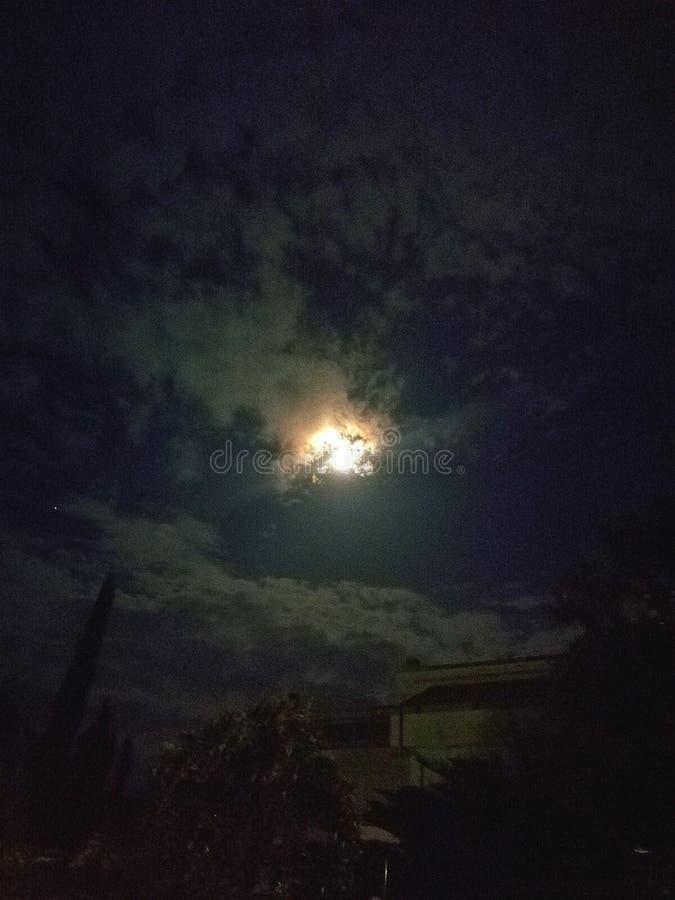 Magiskt ljus av månen royaltyfria foton
