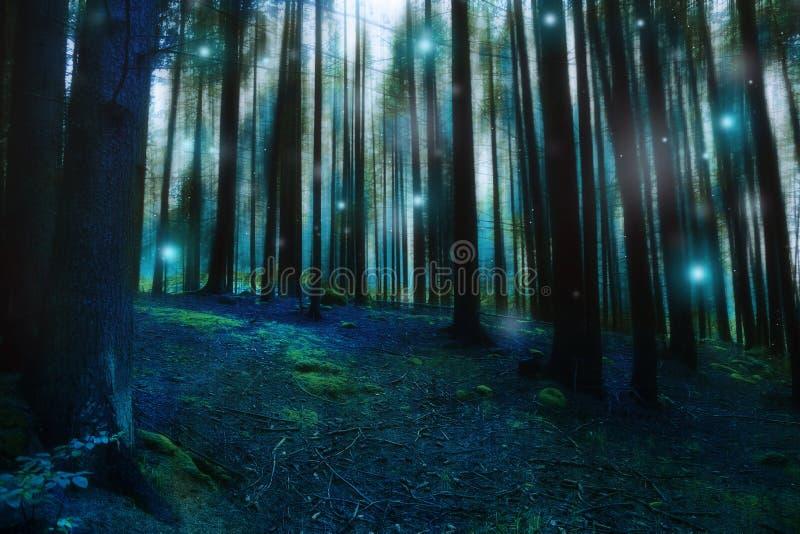 Magiskt overkligt skoglandskap, mörk dyster sagaskog med eldflugor och ljus, mystisk lynnig skog royaltyfria bilder