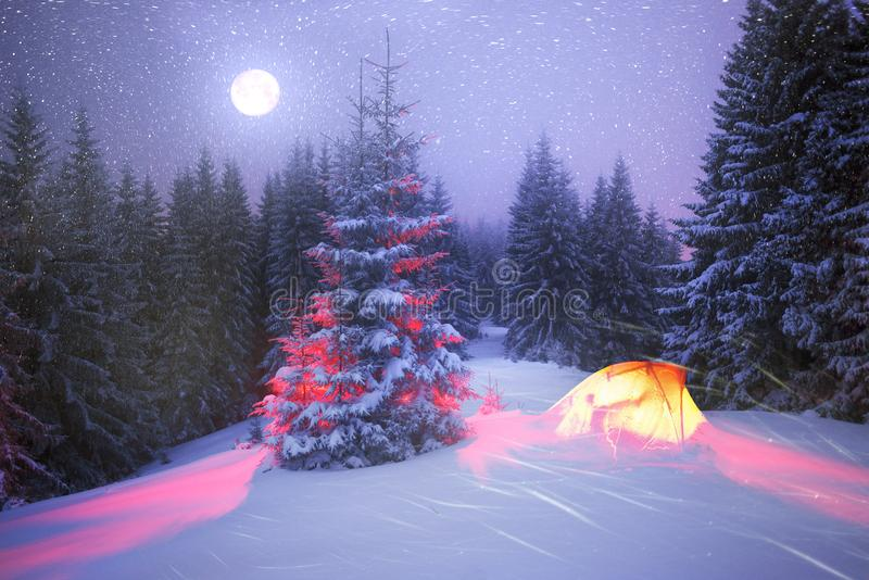 Magiskt träd på jul arkivfoton