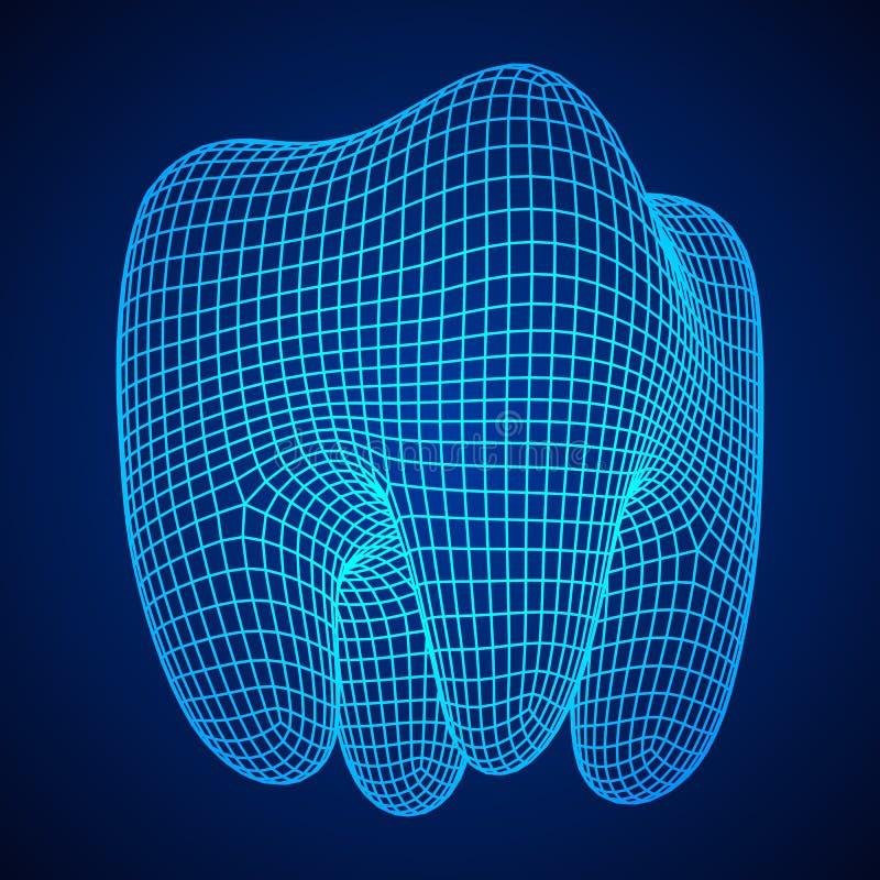 Maglia di Wireframe del dente illustrazione vettoriale