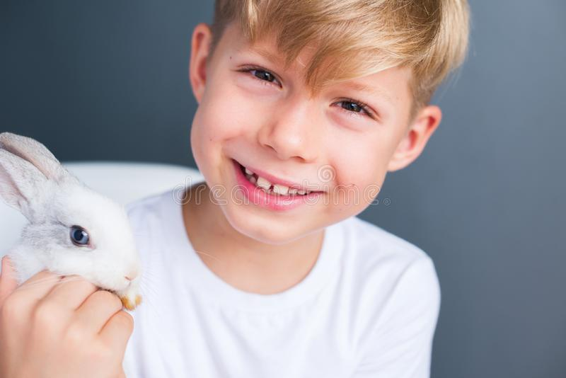 Maglietta bianca del ragazzino e coniglio dwarfish addomesticato fotografie stock