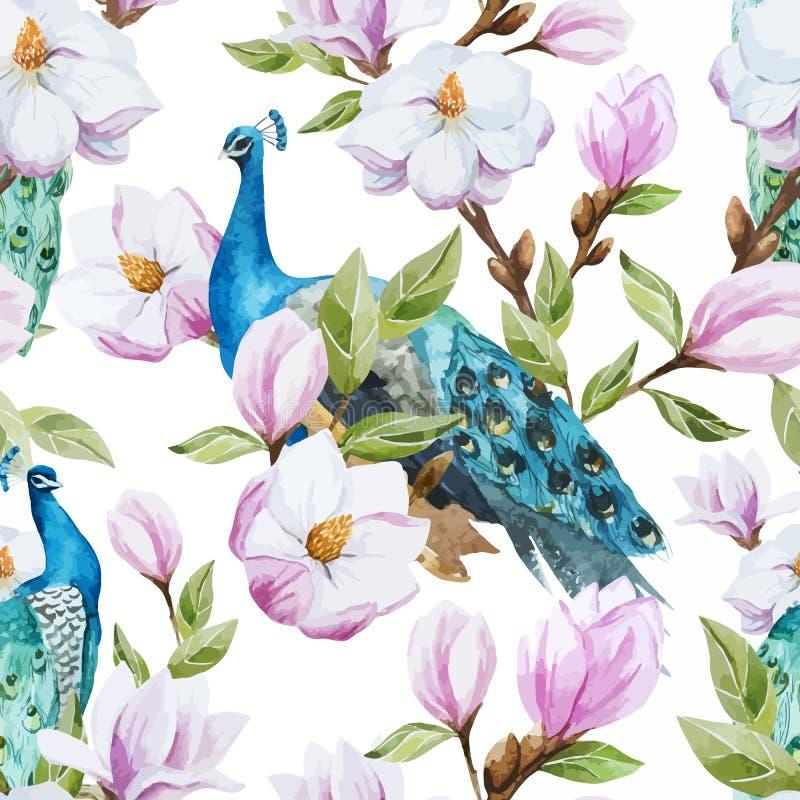 Magnólia e pavão ilustração stock