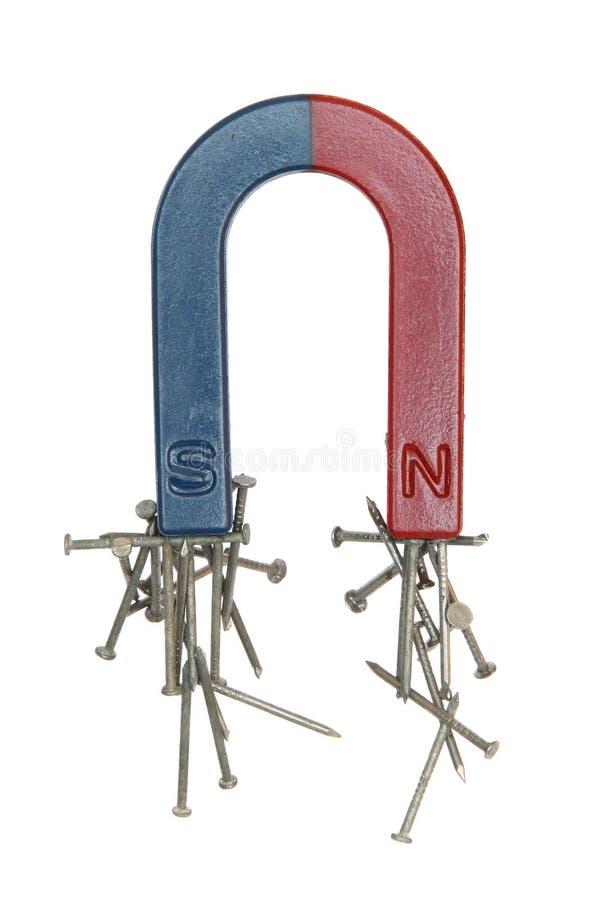Magnete e chiodi. immagine stock