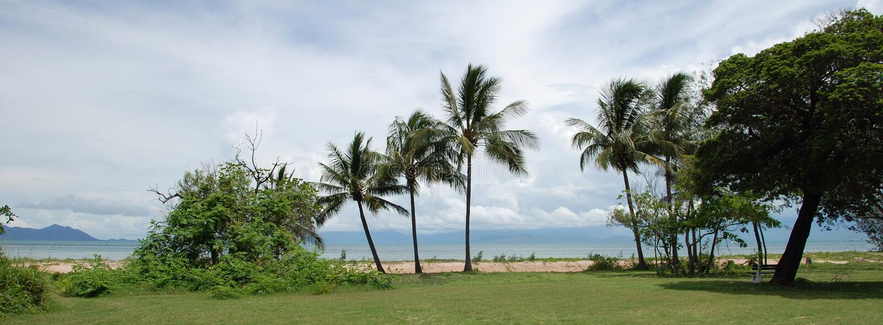 Magnetische Palmen lizenzfreies stockfoto