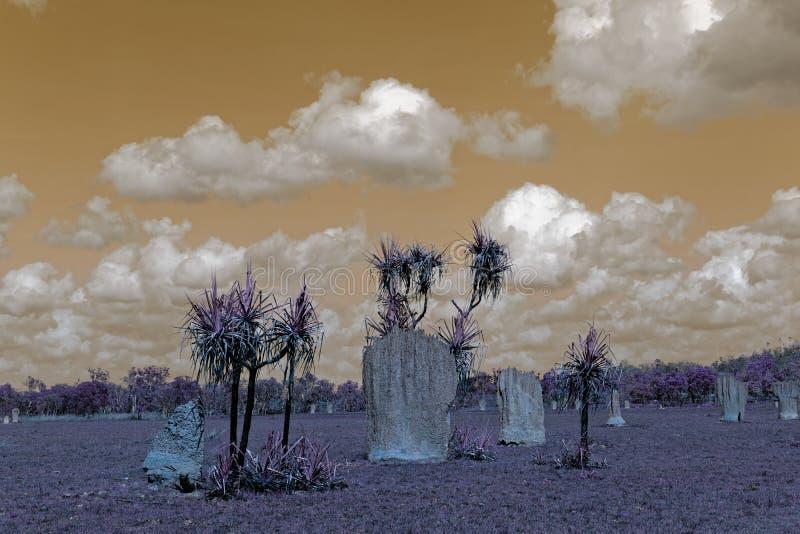 Magnetische Termiten-Hügel gegen einen surrealen Himmel im Sepia stockfotos