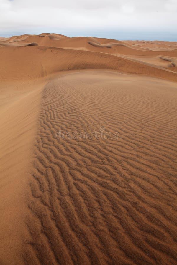 Magnetite edged Dunes Namibia