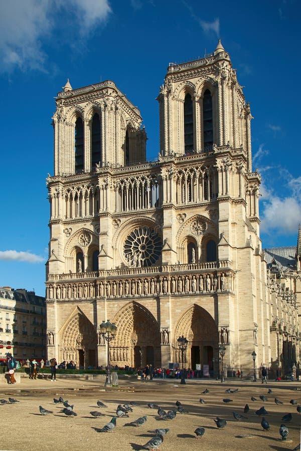 Notre dame de Paris Cathedrale royalty free stock images