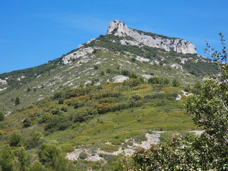 Magnificent landscape with this mountain covered with vegetation in the Luberon in Provence. Photo of a magnificent provencal landscape with this mountain stock photo