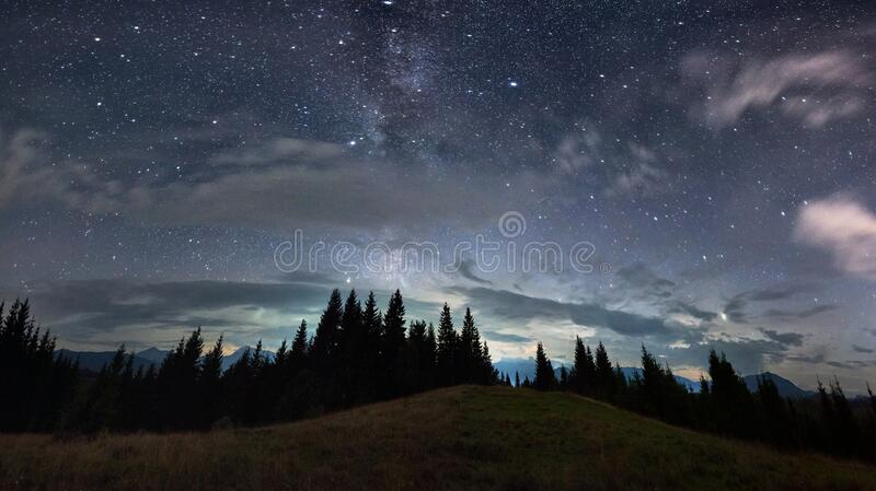 Beautiful mountain forest under night starry sky. royalty free stock image