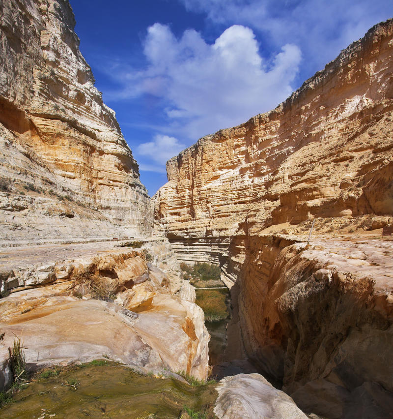 Magnificent picturesque gorge En-Avdat royalty free stock image