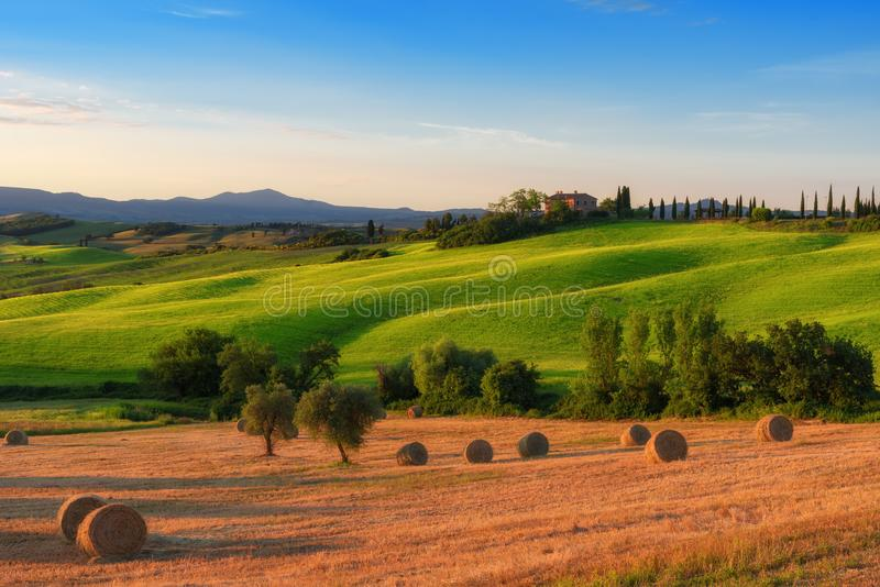 Magnificent spring landscape at sunrise.Beautiful view of typical tuscan farm house. Green wave hills, cypresses trees, hay bales, olive trees, beautiful stock photos